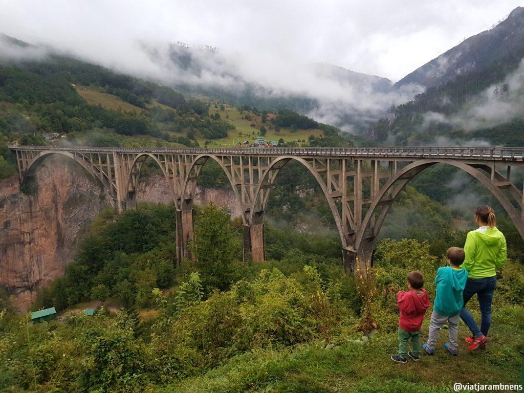 Vista al pont de Djurdjevica Tara